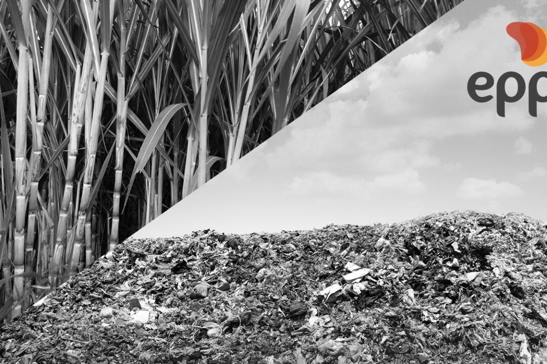 participação do biogás e do biometano na matriz brasileira
